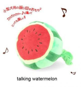 Talking Watermelon Toy