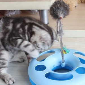 Boazz Cat Toy - Spinning Toy