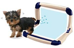 L-shape Pee Tray for Male Dogs