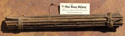 Busy Bunny – Bundle of Willow
