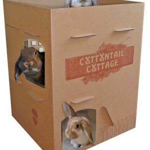 Busy Bunny - Cottontail Cottage