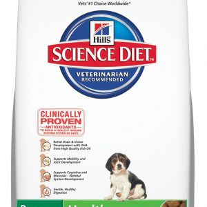 Science Diet Puppy Dry Food